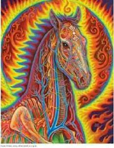 Alex Grey - Net of Being. My mom would love this.