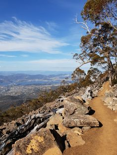 We take in the views of Organ Pipes track on the Iconic Ascent guided walking tour. From sea to the summit of kunanyi / Mt Wellington at 1271 m. Tasmania, Walking Tour, Pipes, Walks, Grand Canyon, Things To Do, Track, Tours, Sea