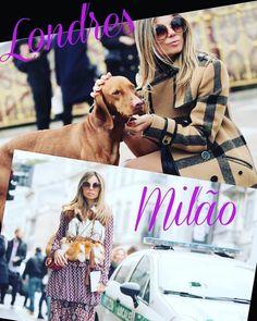 @erikapelozini em duas cidades da #moda com #looks maravilhosos e seu lindo #Chloe #carlina    COMBINA COM TUDO!! #londres #Milão #oticaswanny #fashion #fashionweek #MFW #oticaswannygoestoitaly
