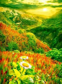 Scenery download free natural scenery desktop wallpapers love untuk adindkanda true love forever together aamiin lovedear allah karim voltagebd Gallery