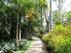 Teia Design: Parque de Inhotim – Paisagismo & Arte