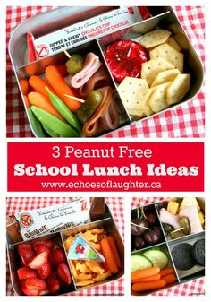 3 Peanut Free School Lunch Ideas. Great ideas for those with peanut allergies or if you attend a peanut free school!