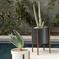 Planters, make from tyre