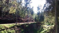 Senderos para caminatas en el parque privado Periland Eco Parque cerca de Bogotá, atracciones en la sabana de Bogotá. Reserva Natural, Country Roads, Carp, Ranger