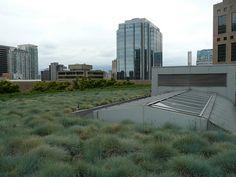 #36 -VPL Roof Garden | Flickr - Photo Sharing!