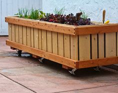 Roll around vege Containers!