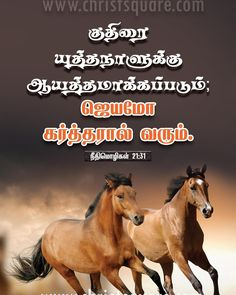 Spring Wallpapers Spring wallpaper Wallpaper and Illustrations Bible Words Images, Tamil Bible Words, Jesus Quotes, Bible Quotes, Bible Verses About Friendship, Blessing Words, Tamil Christian, Bible Verse Wallpaper, Christian Wallpaper