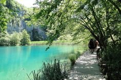 Walking along the wooden walkways at Plitvice Lakes National Park #croatia a @unescoworldheritage site. Park trams take visitors to the park's 3 levels or you can hike it all The lakes interconnect cascading in #waterfalls. Allow 6 to 8 hours hiking/walking even if using the trams. #parks #culturaltourism #europe2017 #Balkans #travelwriter #nature_brilliance @ifwtwa1
