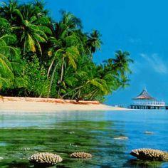 Puedes disfrutar de las hermosas playas de la Isla de San Andres.