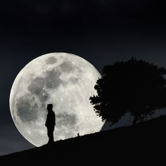 Big Moon - Photography by Carlos Gotay Space Photography, Moon Photography, Family Photography, Photography Ideas, Man On The Moon, Over The Moon, Big Moon, Full Moon, Mind Blowing Pictures