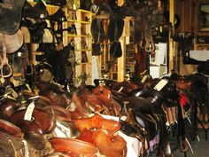 A few of the many saddles in our Museum