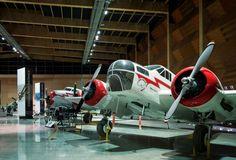 Auckland - Museum of Transport and Technology (MOTAT) www.motat.org.nz/