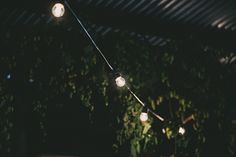 Sarah + Josh   Photography by Katie Hillary   Styling by Feast Of Love Feast Of Love, Track Lighting, Wedding Events, Ceiling Lights, Photography, Home Decor, Style, Swag, Photograph