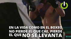 BOXEO PROYECTO MOTIVACIÓN ON DESIGN STUDIO - YouTube