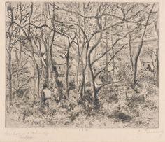 Pissarro | Pontoise (Paysage sous bois à l'Hermitage) | 1879 | Estampe (gravure taille-douce et aquatinte)