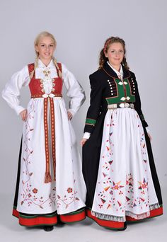 Bunad from Aust Agder County, Norway Norway Culture, Norwegian Clothing, Norwegian People, Norwegian Rosemaling, Folk Costume, Historical Clothing, Scandinavian Style, Traditional Dresses, American Girl
