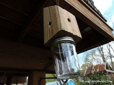 Build your Own Carpenter Bee Trap