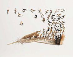 「鳥の羽根 紙 加工」の画像検索結果