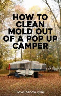 Mold is certainly a common problem with pop up campers. When the canvas part of the camper is set up, it can get wet. If you're not able to dry it before you have to fold the camper up again, the conditions are just right for mold. What's worse, the insipid growth can infect every area of your camper including the exterior, interior and upholstery. Untreated mold problems can even damage the structural integrity of the camper. | How to Clean Mold Out of a Pop Up Camper from #LoveToKnow