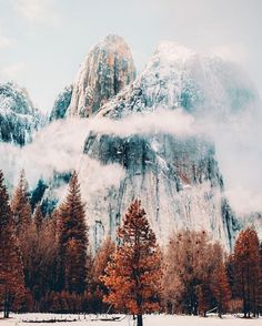 How pretty is Yosemite National Park? Tag someone who loves the mountains as much as you! _________________ #yosemite #yosemitevalley #nelsonbc #girlswhohike #yosemitepark #explorebc #pnw #california #mountains #hiking #travel #traveler #wanderlust #traveling #traveladdict #iliketohike #adventure #ig_travel #yosemitenps #mountainporn #travelblogger #outdoors #beautifuldestinations #naturalplease #thetravelgirltribe #wearetravelgirls #girlslovetravel #winterscene #gltlove #cali