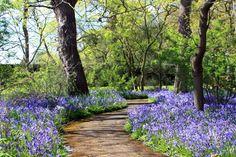 Botanic Gardens, Glasnevin in Dublin, Ireland