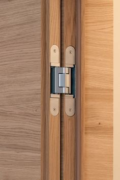 frameless interior doors with concealed hinges Concealed Door Hinges, Hidden Door Hinges, Barn Door Hinges, The Doors, Windows And Doors, Door Design, House Design, Furniture Hinges, Inset Cabinets