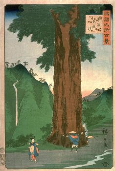"Hiroshige II Kōshū Yatatesugi - 歌川広重 - Wikipedia ""Hundred scenic spots in each country Koshu Yadate cedar"" Second generation Hiro Heavy Art. Japanese Woodcut, Art Asiatique, Japanese Painting, Japanese Prints, Japan Art, Wood Engraving, Woodblock Print, Traditional Art, Illustration Art"