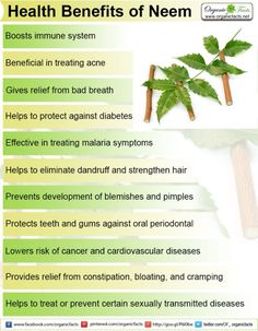 Some of the most important health benefits of neem include its ability to treat dandruff, soothe irritation, protect the skin, and boost the immune system.