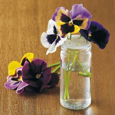 Showcase Small Flowers with an upcycled glass herb shaker! by gardengatenotes #Flower_Vase #Spice_Shaker