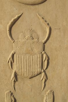 "Scarab of Transformation- 'Khepri' Beetle- Ancient Egypt. The scarab beetle in ancient Egypt was associated with the sun and renewal. Egyptians worshipped the scarab under the name Khepri: ""He who came forth from the earth"" Ancient Egyptian Art, Ancient Aliens, Ancient History, Egypt Museum, Empire Romain, Art Antique, Egypt Art, Ancient Artifacts, Gods And Goddesses"