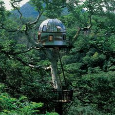 Beach Rock Tree House :: Kobayashi Takashi built this breathtaking treehouse in 2005 with the purpose of communicating with outer space.