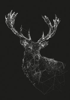 Art Illustration / Stag by Jordan Rogers Art And Illustration, Animal Illustrations, Animal Drawings, Design Graphique, Grafik Design, Geometric Art, Geometric Drawing, String Art, Design Art