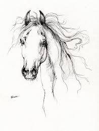 Resultado de imagem para horse drawing