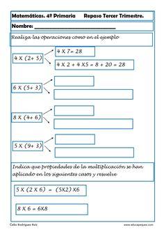 criterios de divisibilidad - Buscar con Google | compuestos y primos ...