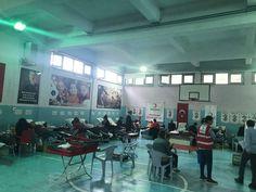 Kan bağışlama rekoru Ereğli'de Gym Equipment, Bike, Bicycle Kick, Bicycle, Fitness Equipment, Workout Equipment, Bicycles
