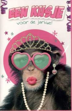Super grappige kaart met een aap. Grappige verjaardagskaarten - humor kaarten