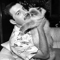 Freddie Mercury with his kitteh.  He actually dedicated one of his albums to his cat.