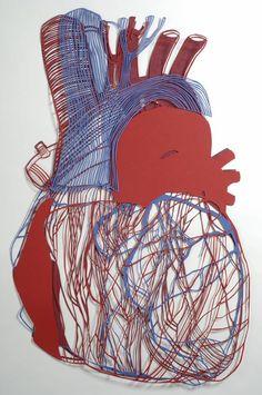 anatomical paper art  Annie Vought