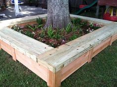 40 Best Ideas Landscaping Around Trees Flower Beds Yards Flower Bed Ideas Backyard Projects, Outdoor Projects, Garden Projects, Backyard Ideas, Pergola Ideas, Diy Projects, Pergola Kits, Outdoor Ideas, Tree Seat