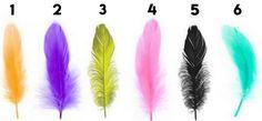 test de plumas