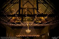 Single Gathered Fairy Lights with Chandelier. Lighting by Oakwood Events.