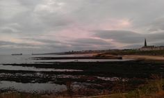 The view from Cullercoats