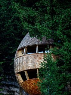 Wonderful Tree House. You'll Love It! (13)