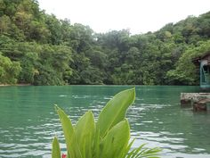 Blue Lagoon, Jamaica   the coolest, creepiest place ever :)