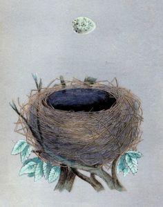 Empty Nest, empty nest syndrome, parenting, empty nesters