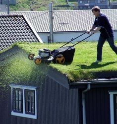 Green Living: The Green Roof. Have to maintain it somehow. Living Roofs, Rooftop Garden, Green Life, Green Building, Grass, Exterior, Urban, Landscape, Outdoor