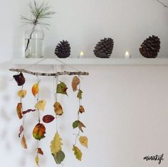 Herfstactiviteiten: Thema herfst voor peuters Pine Cone Tree, Pine Cones, Autumn Room, Fall Projects, School Themes, Animal Party, Creative Kids, Fall Crafts, Fall Decor