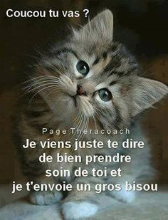 Pour toi Amor Humor, Good Morning Quotes For Him, Monday Humor, Tu Me Manques, Happy Friendship, Bon Weekend, Cute Cartoon Animals, Encouragement Quotes, Be Yourself Quotes
