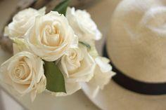 Crisp white roses