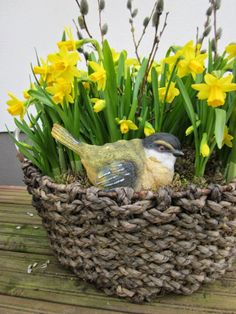 Easter bird with narcissus and catkins